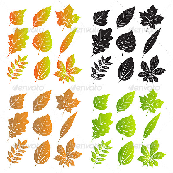 GraphicRiver Silhouettes of Leaves with Veins 7829404