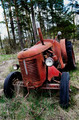 old rusty tractor in the forest - PhotoDune Item for Sale