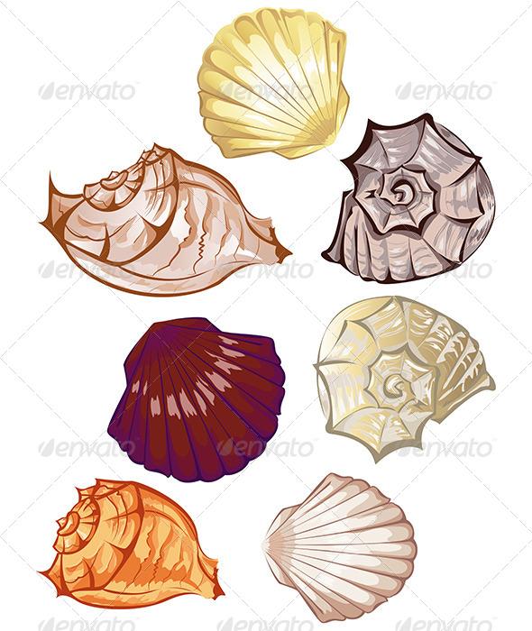 GraphicRiver Multi-Colored Seashells 7809105