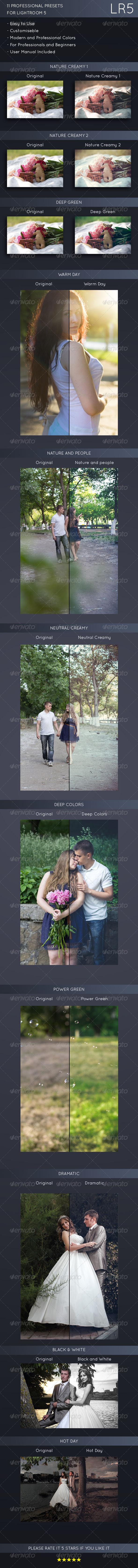 GraphicRiver 11 Pro Universal Presets 7841434