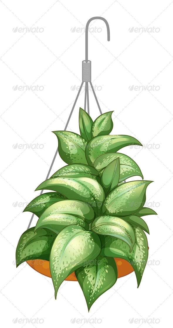 GraphicRiver A pot with a hanging plant 7844172