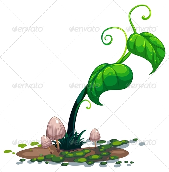 GraphicRiver A growing green plant 7844179