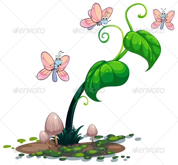 GraphicRiver A green plant with butterflies 7844232