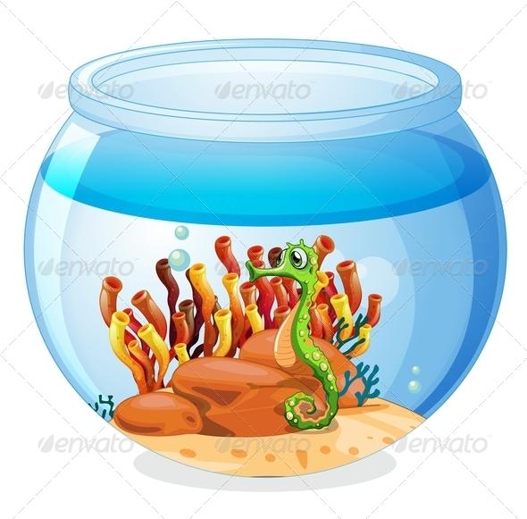 Aquarium with Seahorse