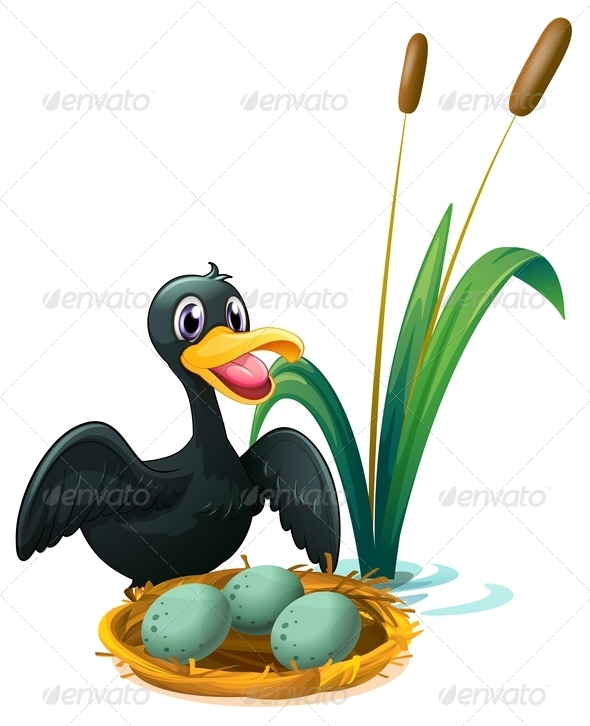 GraphicRiver A duck near nest with eggs 7845448