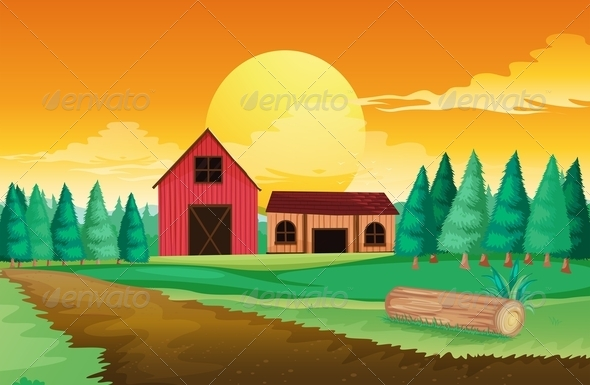 Farm houses with pine trees