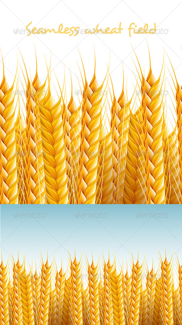 Seamless Wheat Field Background