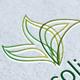 Ecoline - GraphicRiver Item for Sale