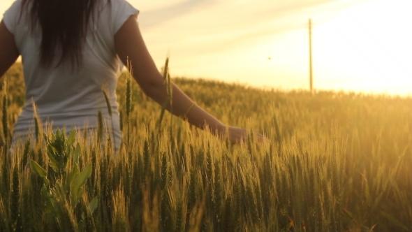 Girl Walking Through Wheat Field 4