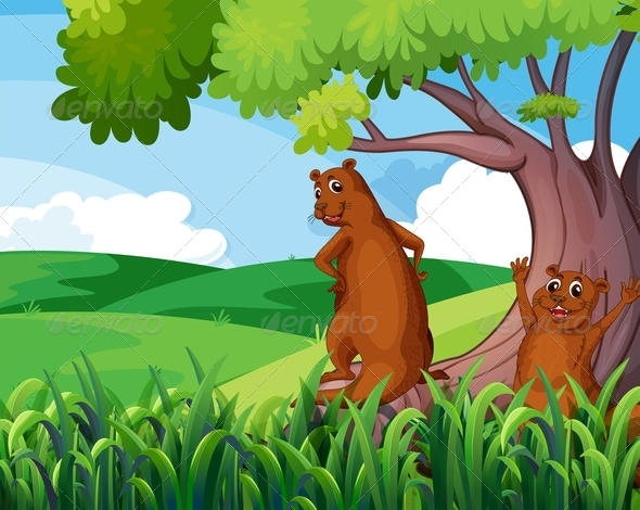 Gophers under a tree