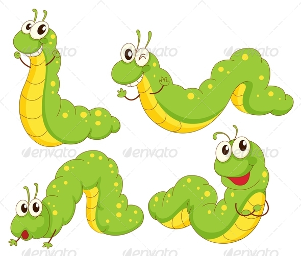 GraphicRiver Four green caterpillars 7851632