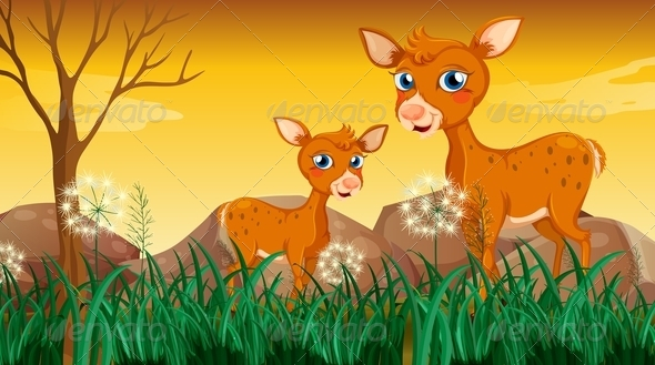 Two deers in the grass
