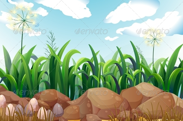 GraphicRiver Grass and Rocks 7853318