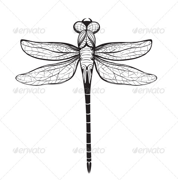 GraphicRiver Dragonfly Inky Drawing 7857598