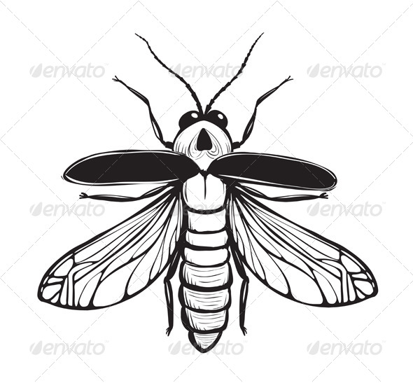 GraphicRiver Firefly Inky Drawing 7857615