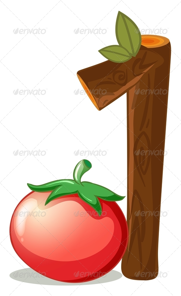 GraphicRiver One Tomato 7859739