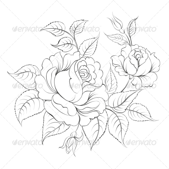 Realistic Rose Outline...