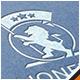 Lion Flag Crest Logo - GraphicRiver Item for Sale