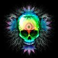 Psychedelic Skull Marijuana - PhotoDune Item for Sale