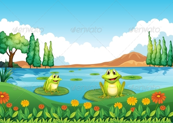 Two playful frogs in the pond