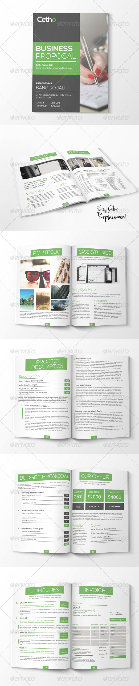 GraphicRiver Simple Proposal 7889484