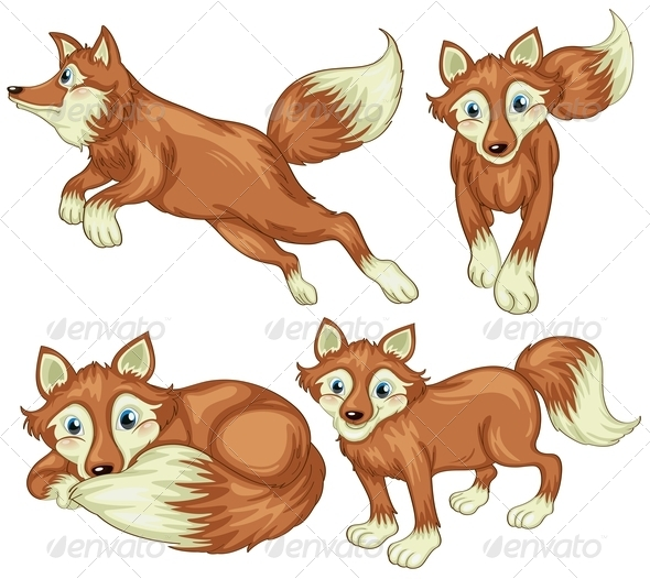 GraphicRiver Four Foxes 7892683