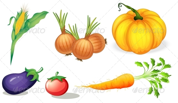 GraphicRiver Six Vegetables 7892697