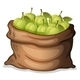 A sack of Guavas - GraphicRiver Item for Sale