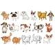 Set of Dog Breeds - GraphicRiver Item for Sale
