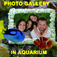 Photo Gallery in Aquarium - VideoHive Item for Sale