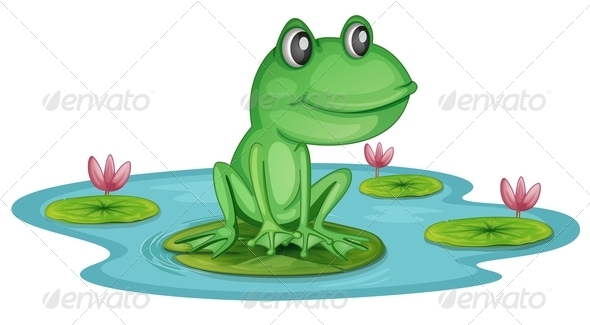 GraphicRiver Frog in a Pond 7902198