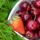 Cherries and strawberry in a ceramic bowl on green grass - PhotoDune Item for Sale