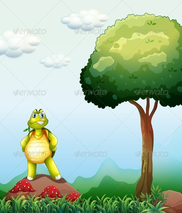 Turtle Standing Standing on Rock