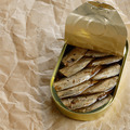 Opened Sprat tin can - PhotoDune Item for Sale