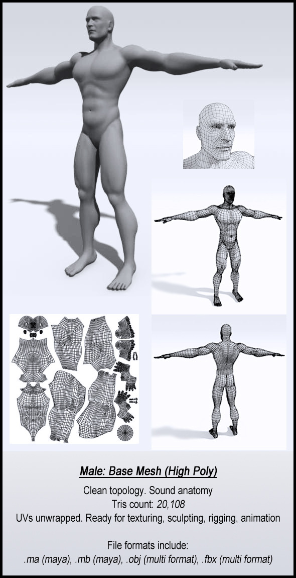 Male Base Mesh High Poly