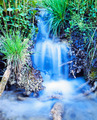 Creek waterfall rushing green meadow grass plants - PhotoDune Item for Sale