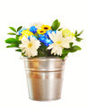 Bouquet of bright flowers in a bucket isolated over white background - PhotoDune Item for Sale