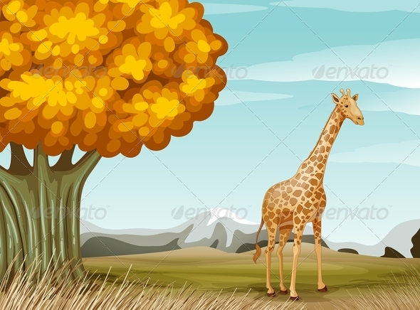 GraphicRiver A Giraffe Near a Big Tree 7911618