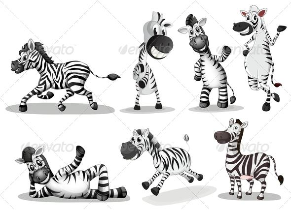 GraphicRiver Playful Zebras 7912901