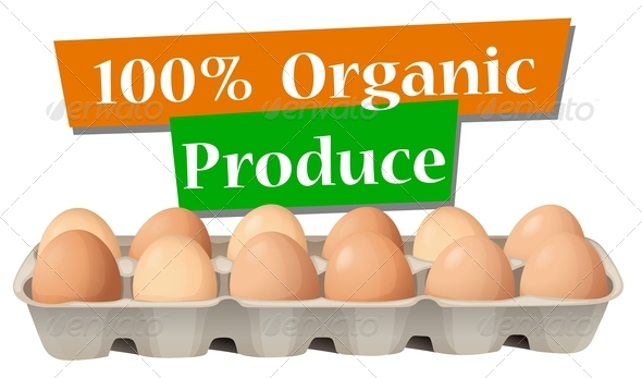 GraphicRiver Organic Produced Eggs 7915688