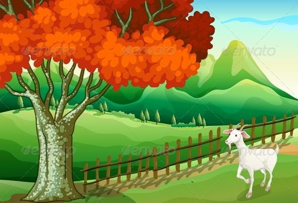 GraphicRiver White Goat Near a Big Tree 7915780