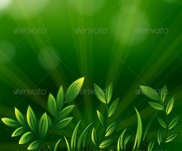GraphicRiver Green Leafy Plants 7915924