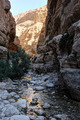 Mountains and water in the Ein Gedi nature reserve - PhotoDune Item for Sale