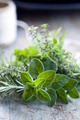 Fresh Herbs Bouquet Garni - PhotoDune Item for Sale