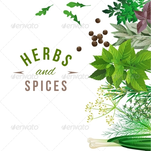 GraphicRiver Herbs and Spices 7930084