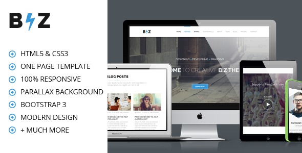 ThemeForest BIZ One Page Parallax HTML Template 7893623