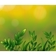 Leafy Plants - GraphicRiver Item for Sale