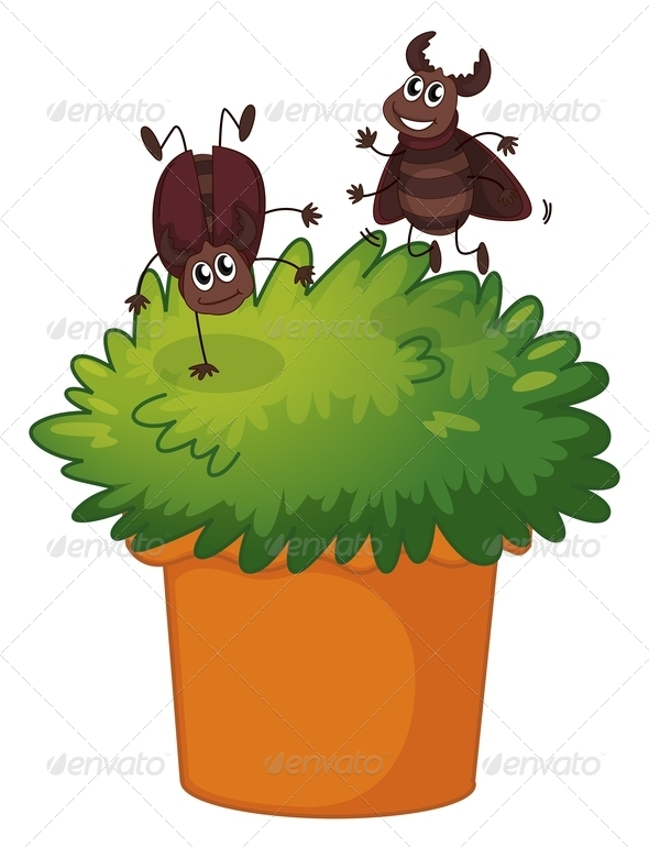 GraphicRiver Playful Cockroaches with Plant 7937044