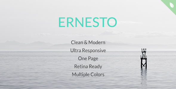 ThemeForest Ernesto One Page HTML5 Template 7841934