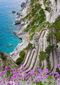 Capri, Via Krupp, Italy. - PhotoDune Item for Sale